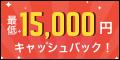 ドコモ光(株式会社Wiz)