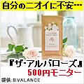 『ザ・アルバローズ』500円モニター