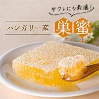 巣蜜【山田養蜂場】